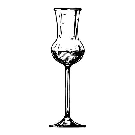 Szkło Grappa. Ilustracji wektorowych szklanej kielich w tuszu ręcznie narysowanego stylu. samodzielnie na białym tle.