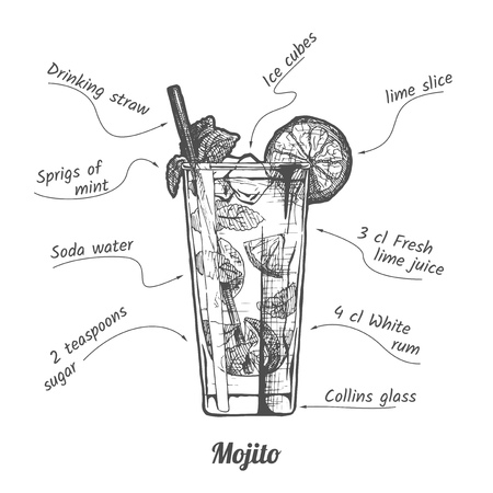 Ink drawing illustration of a drink called Mojito and its ingredients in vintage hand drawn style.