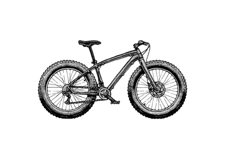Fat bike Vector ink hand drawn illustration of off-road bicycle in vintage engraved style.