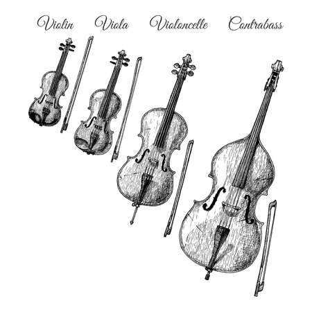 Vector hand drawn illustration of Bowed string instruments in vintage engraved style. Violin, Viola, Violoncello (Cello) and Contrabass (Double bass)