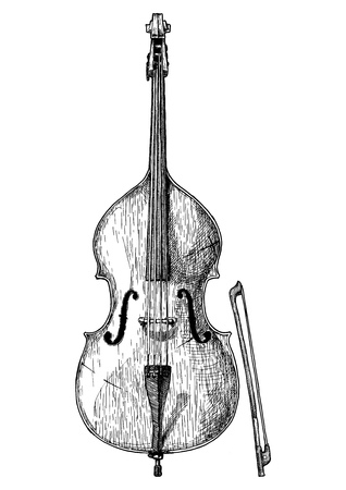 Vector hand drawn illustration of double bass in vintage engraved style. Isolated on white background.