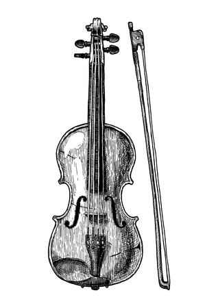 Vector hand drawn illustration of Viola in vintage engraved style. Isolated on white background. front view. Vector Illustration