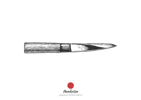 Hankotsu, Japanese kitchen knife.  Vector hand drawn illustration in vintage engraved style. Isolated on white background. Illustration