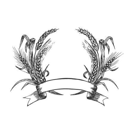 Vector hand drawn illustration of wheat wreath with ribbon and copy space for text in vintage engraved style. Isolated on white background.