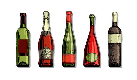 Vector color set of wine and champagne bottles in ink hand drawn style. isolated on white.