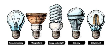 Vector hand drawn illustration of the light bulb evolution set. incandescent light bulb, tungsten halogen, Energy-saving light, LED lamp and light-emitting diode filament. Isolated on white background.