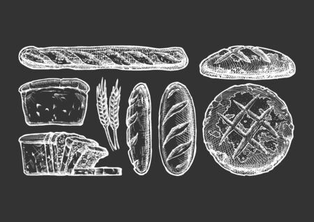 Vector hand drawn illustration of different breads: wheat germ, long loaf, pan loaf (sliced), baguette and boule. Isolated on black background. Vettoriali