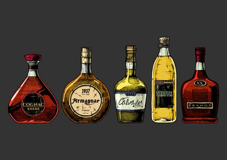 Types of Brandy. Vector hand drawn illustration set of different brandies. Cognac, armagnac, calvados, Grappa and brandy. Isolated on black background.