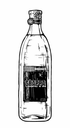 Vector hand drawn illustration of grappa bottle. Isolated on white background Vettoriali