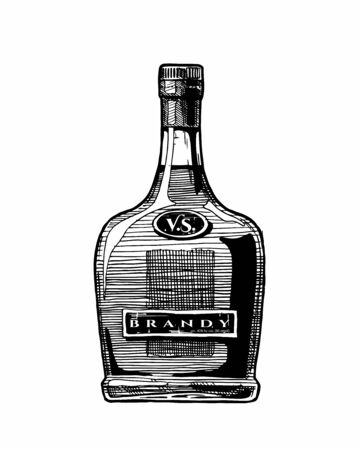 Vector hand drawn illustration of brandy bottle. Isolated on white background Vettoriali