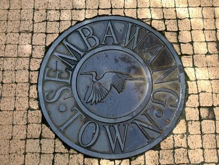 A manhole cover on a pedestrian walkway