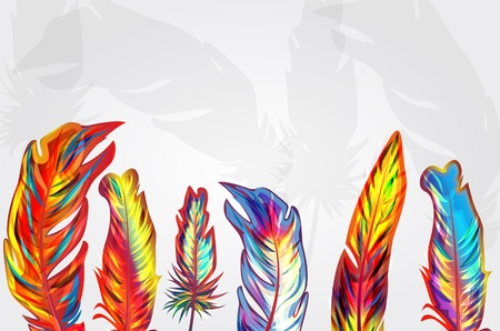 opalesce: Vector background with parrot multicolor feather Illustration