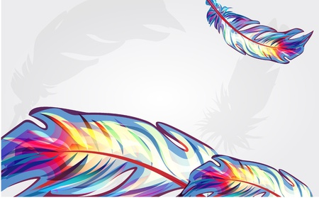 Bright feathers Vector