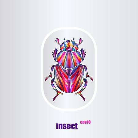scarab: Scarab. Vector multicolor illustration