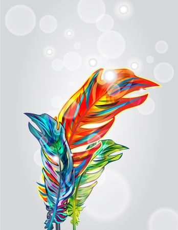 a poet: Bright vector background with multicolor feathers Illustration