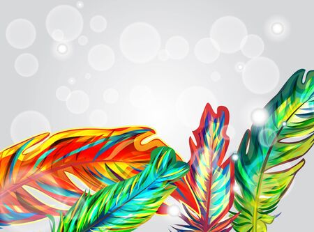 Bright background with multicolor feathers Vector