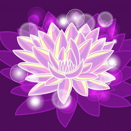 Shiny lotus on a violet background Vector