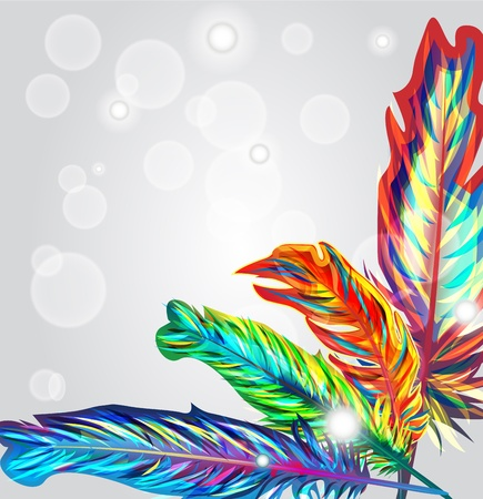 brazil symbol: Bright vector background with multicolor feathers Illustration
