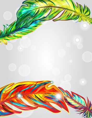 Bright vector background with multicolor feathers Vector