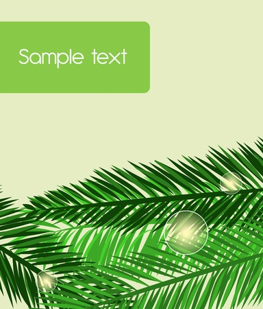 Green seamless background with palm leafs Vector