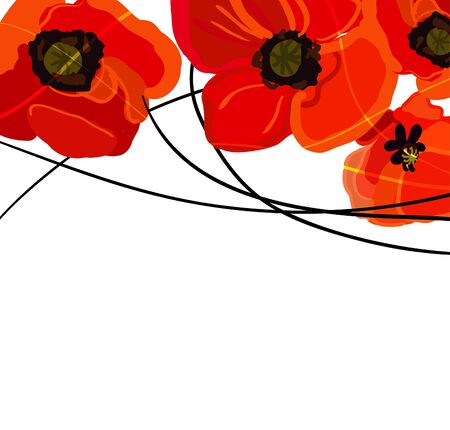 poppy field: Abstract light vector background with red poppies Illustration