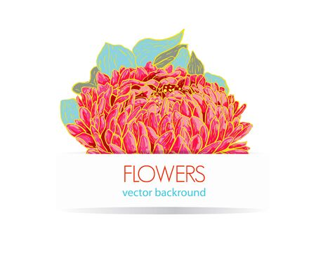Abstract white vector background with drawing flowers Vector