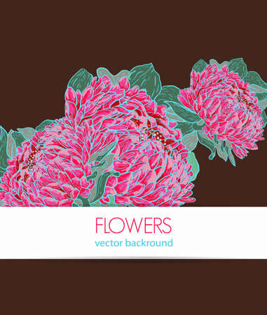 Abstract brown vector background with drawing flowers Vector