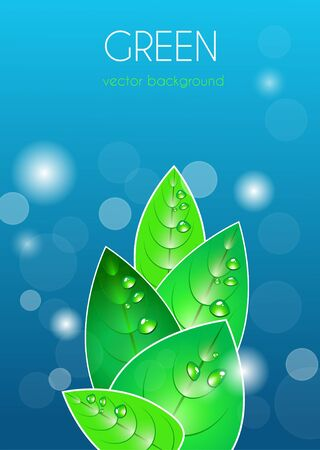 Abstract vector natural background with green leafs Stock Vector - 9765280