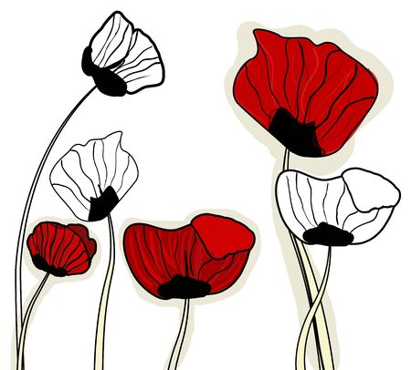 poppy field: Abstract light background with red poppies