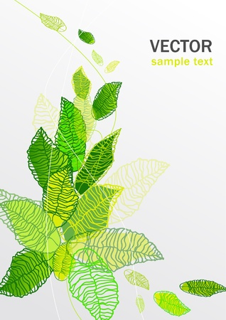 abstract vector floral green background with leaves Stock Vector - 10062767