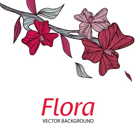 vecotr: Vecotr white background with drawing pink flowers