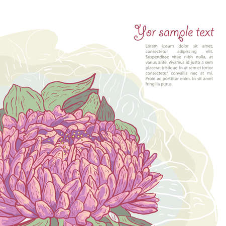 aster: Drawing vector background with poppy
