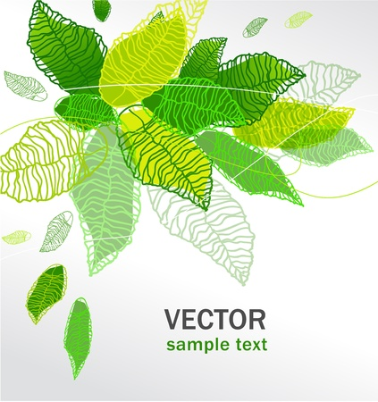 green leafs: abstract vector floral multicolor background with green leafs