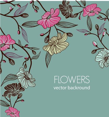 adornment: Floral vector background with drawing flowers