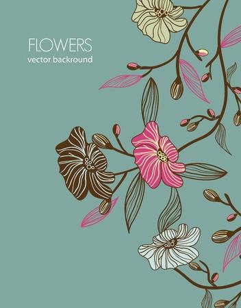 floral vector: Fondo floral del vector Vectores