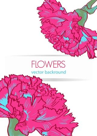 clavel: Vector floral de fondo con flores de color rosa de dibujo Vectores