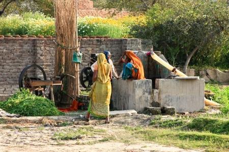 VRINDAVAN,INDIA -  MARCH 18  Indian women in the saris mill plants, 18 March,2012 in Vrindavan, India