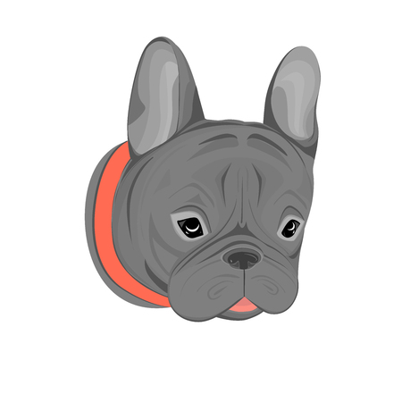French bulldog portrait. Head of dog vector illustration. Pretty puppy cartoon character.