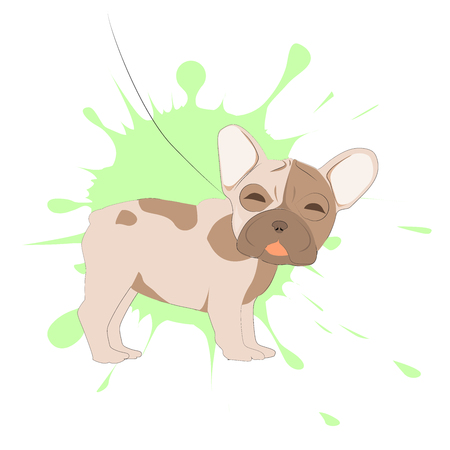 French bulldog portrait on a background of blots. Head of dog vector illustration. Pretty puppy cartoon character.