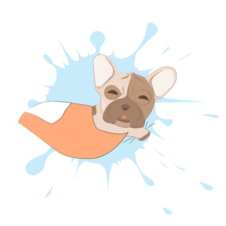Sleeping french bulldog on a background of blots. Head of dog vector illustration. Pretty puppy cartoon character.