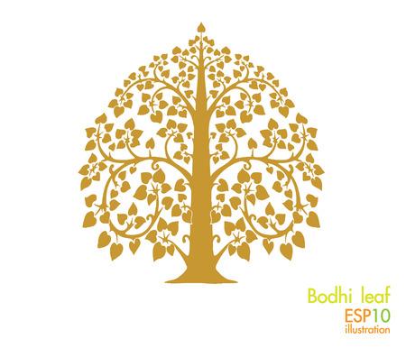 bodhi leaf; tree