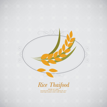 oat: rice vector Illustration