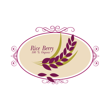 berry: Rice berry Vector illustration.