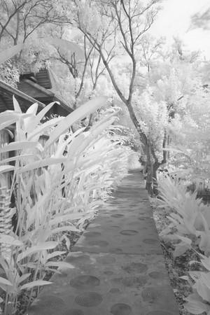 infrared thai house style photo