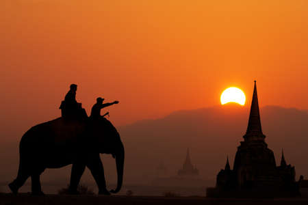 ayuttaya: Elephant tourist in thailand Stock Photo