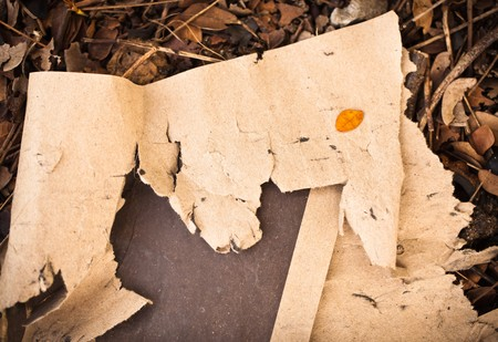ragged: ragged paper background