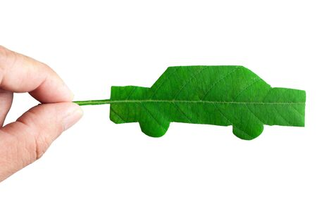 Green car cut from leaf Stock Photo - 8319639