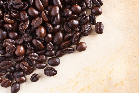 Coffee bean on grunge paper background photo