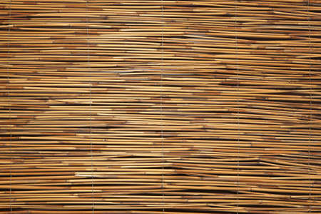 bamboo texture Stock Photo - 8556380