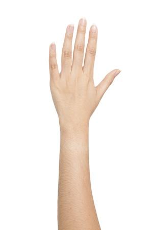 Isolated: Hand make a heart shape Stock Photo - 8556313